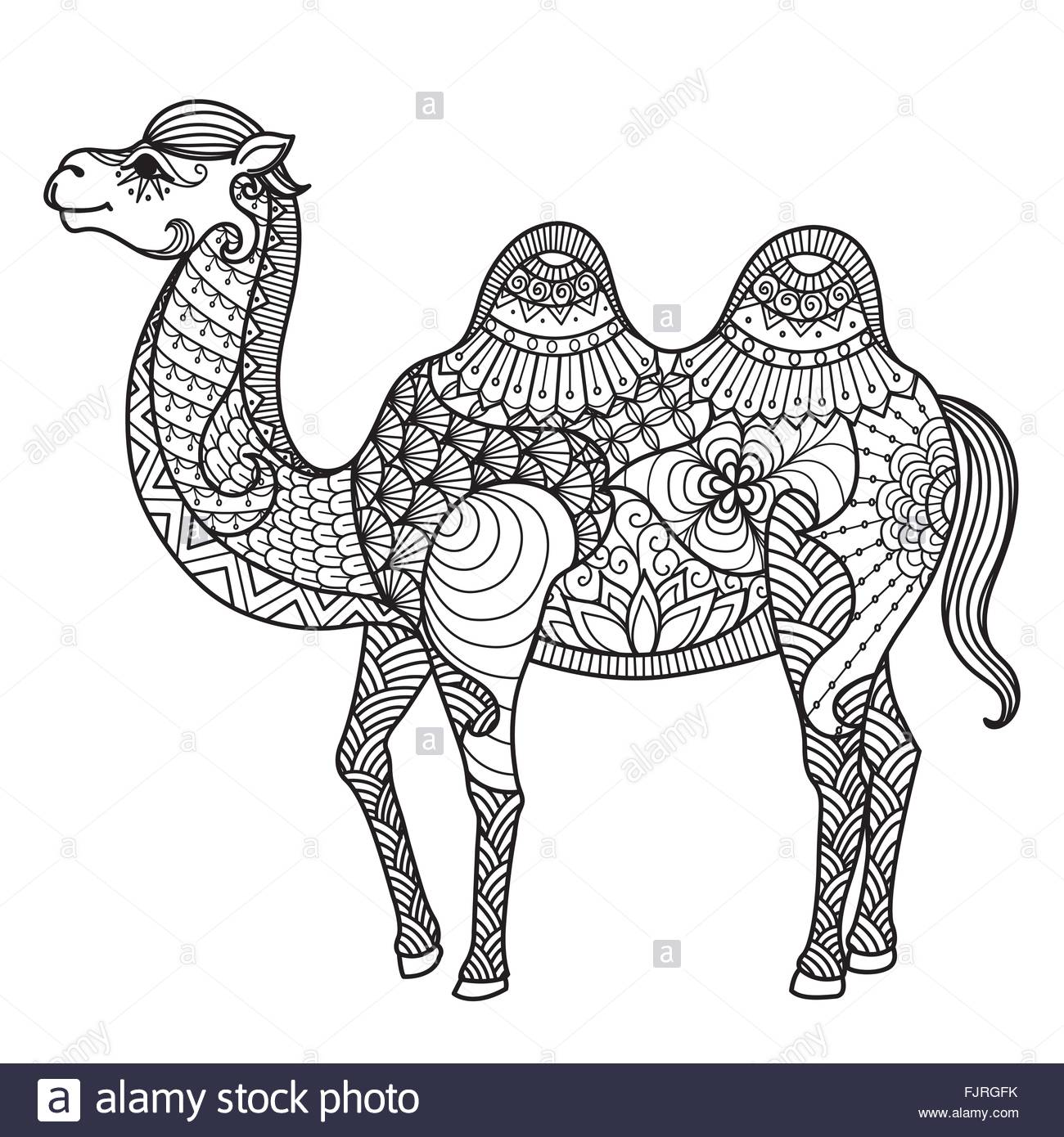 Zendoodle Of Camel For T Shirt Designdesign Element And Adult
