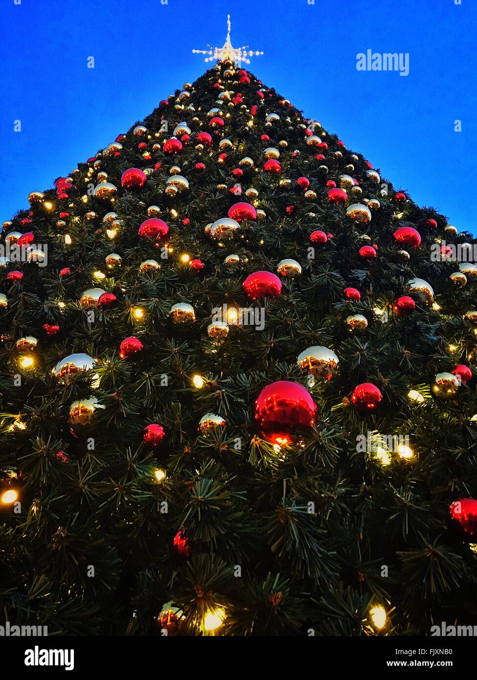 Low Angle View Of Christmas Tree Against Clear Sky Stock Photo ...