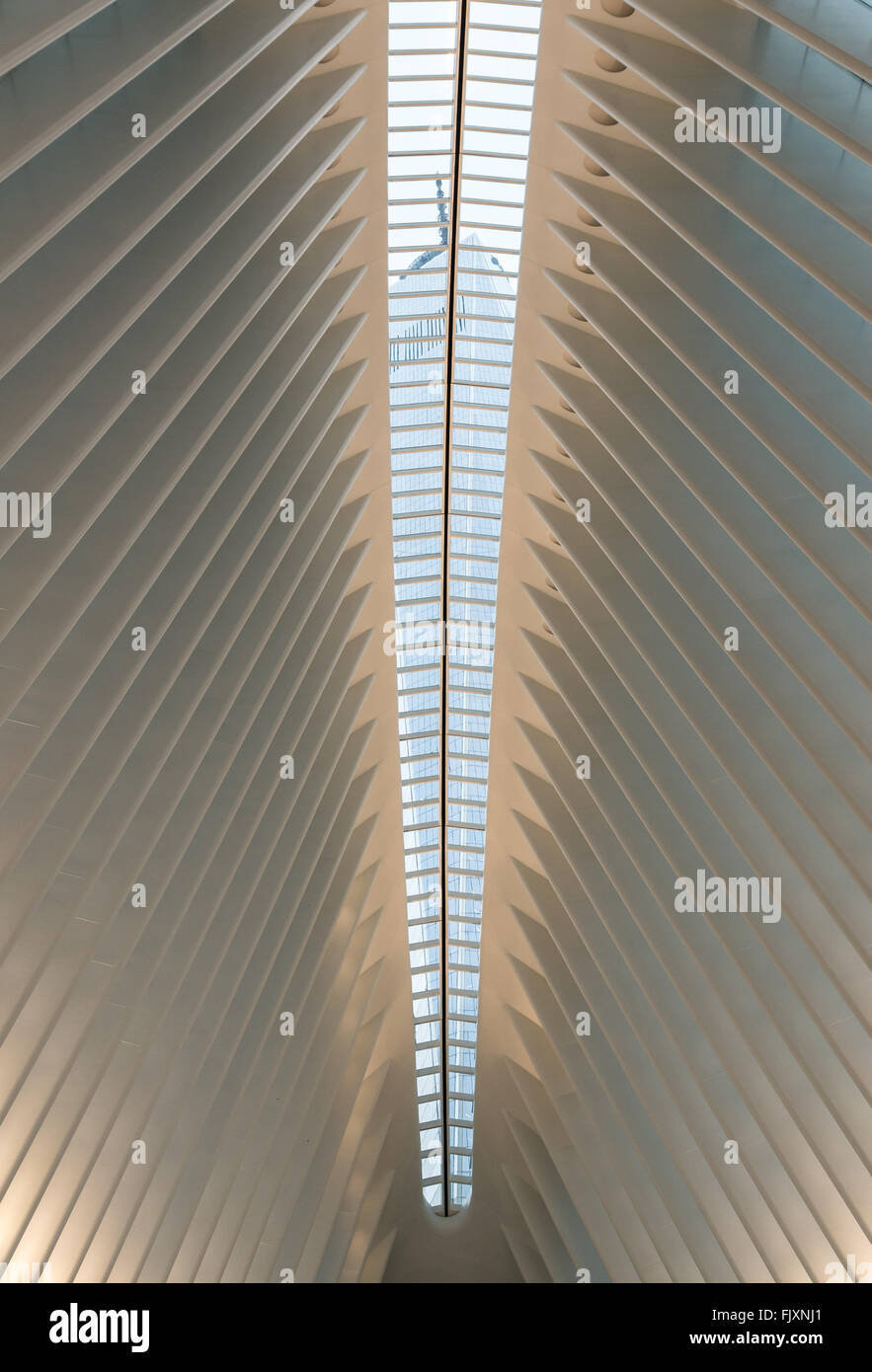 View Of One World Trade Center Freedom Tower Through The Sunlight FJXNJ1