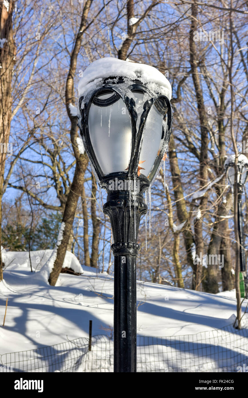 Frozen Central Park lamp post in New York City after a snow storm ...