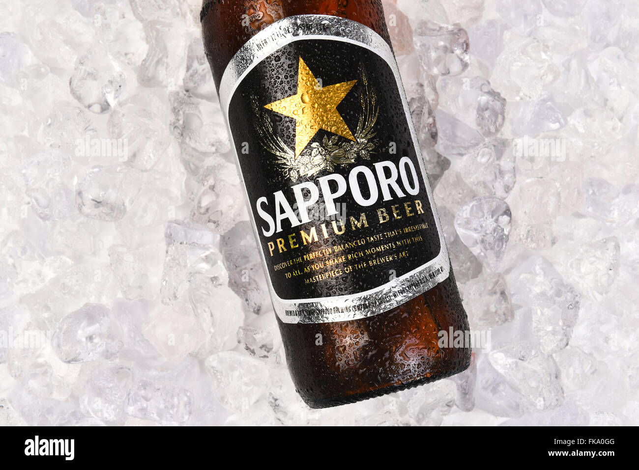 Sapporo Beer Bottle On A Bed Of Ice  Horizontal Format