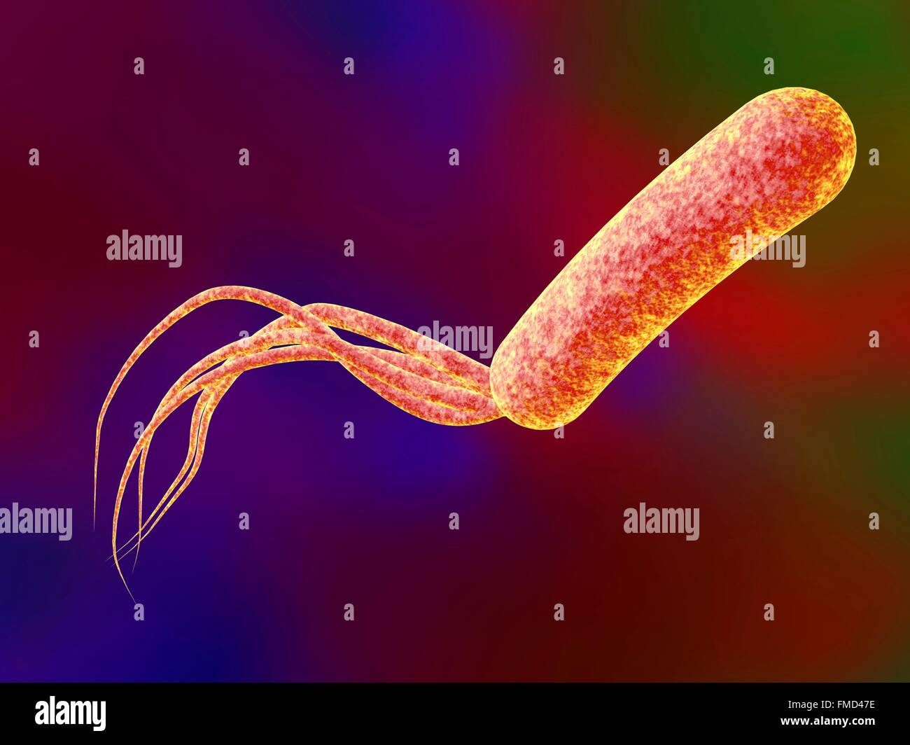 pseudomonas aeruginosa and nosocomial infections Pseudomonas aeruginosa, candida albicans, and device-related nosocomial infections: implications, trends, and potential approaches for control.