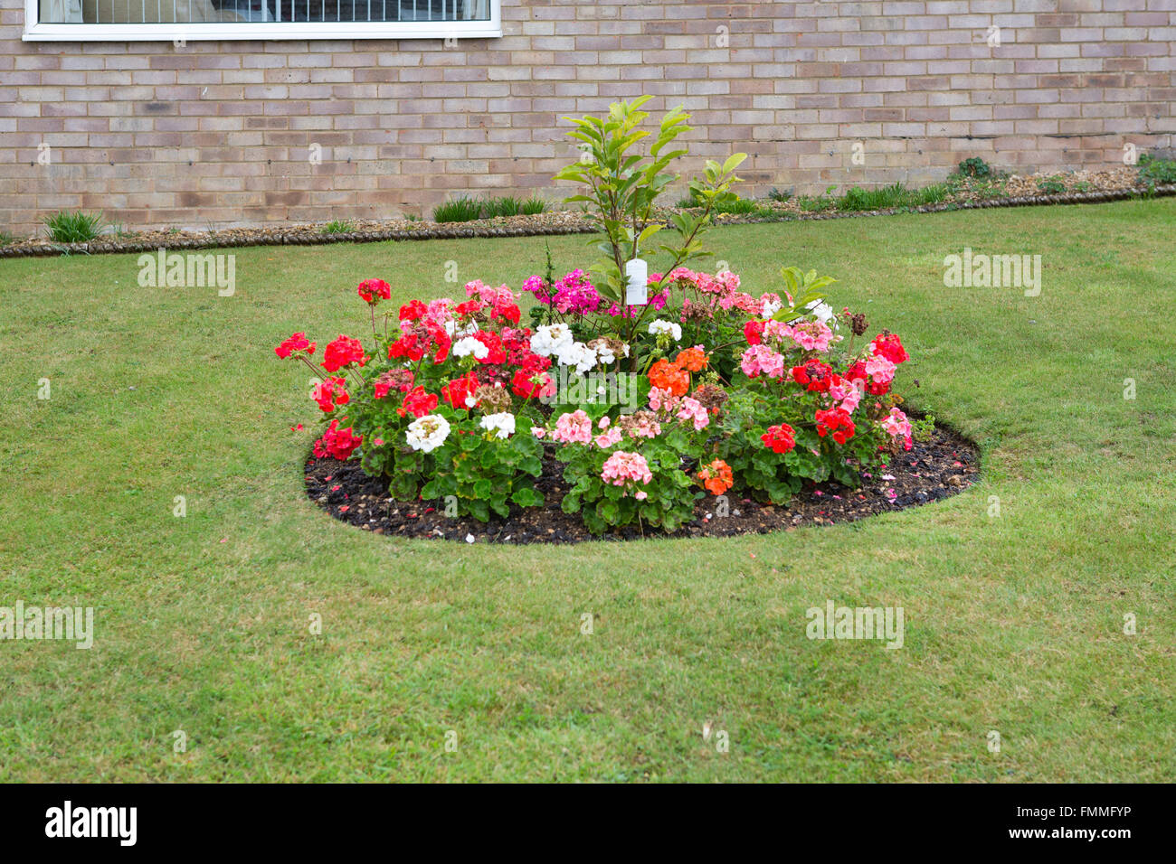 A small circular flower bed in the front garden of a house for Pictures of small flower beds