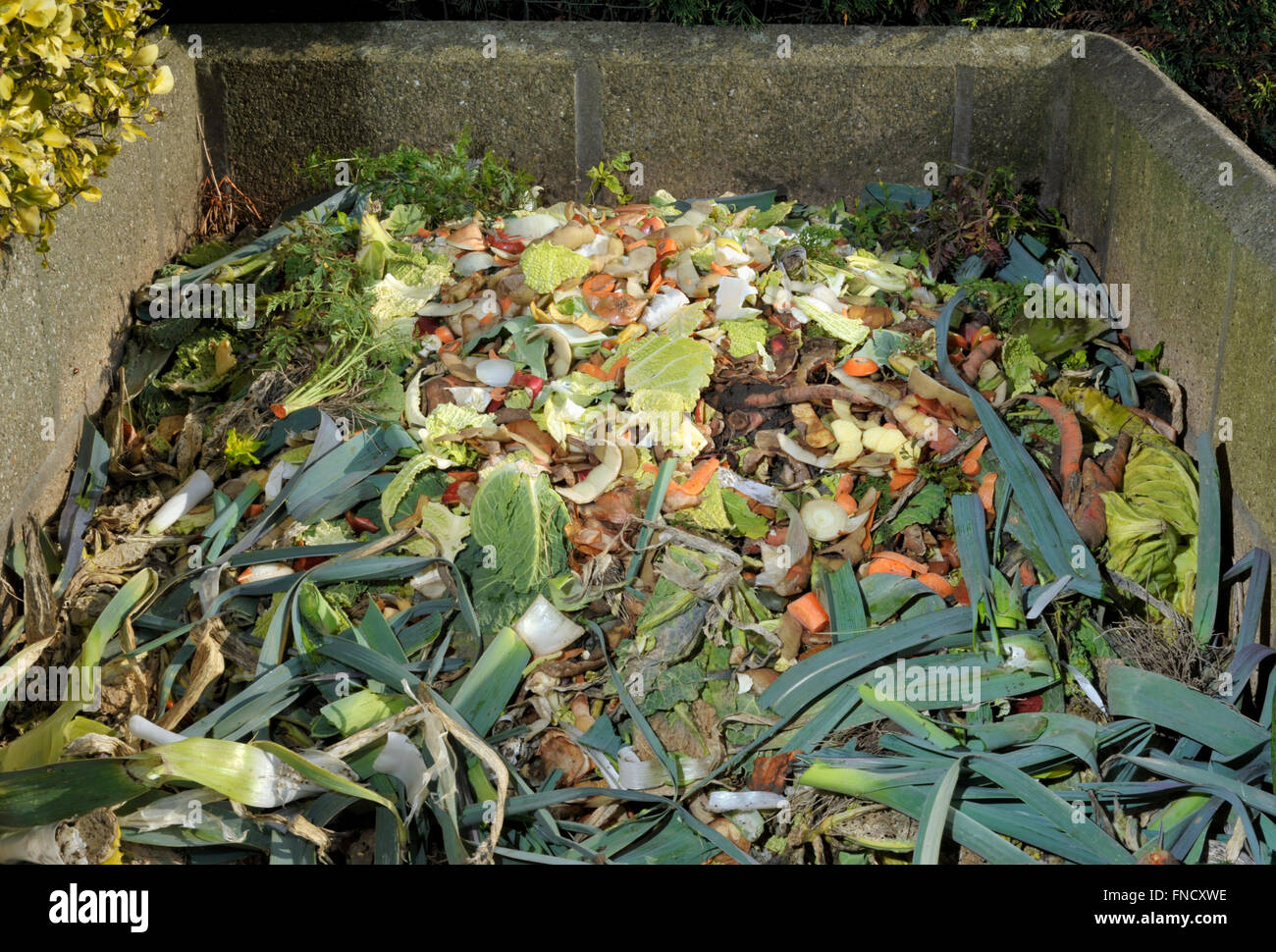 Garden Compost Heap With Kitchen Food Waste Vegetables Fruit