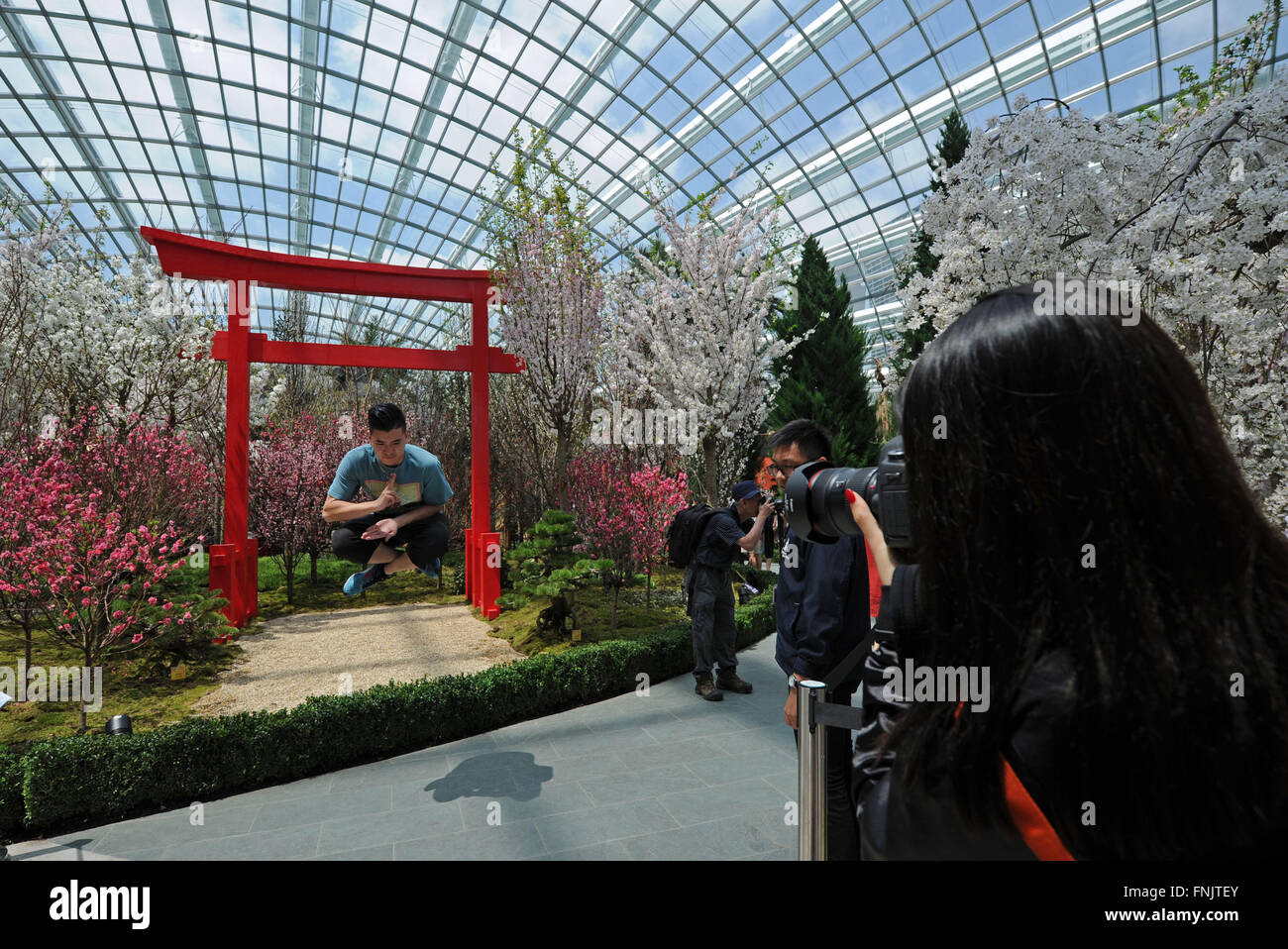 a visitor poses for photos in the flower dome at the gardens by the bay in singapore march 16 2016 singapores gardens by the bay holds blossom - Garden By The Bay Flower Festival