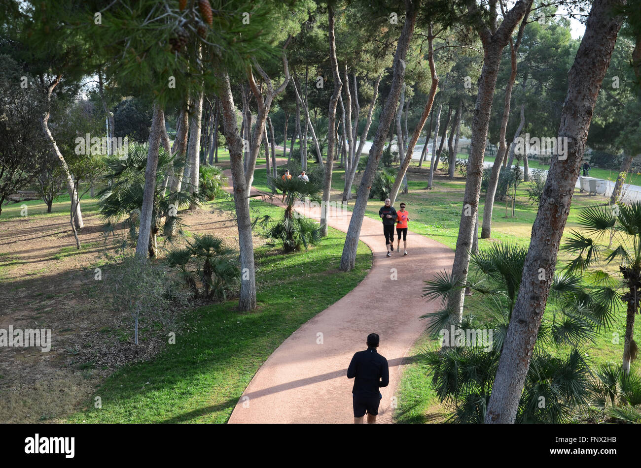Jogging in jardin del turia valencia spain stock photo for Jardin del turia
