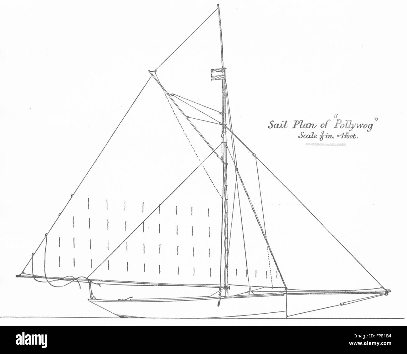 yachts centre board sail plan of u0027pollywog u0027 1 foot antique