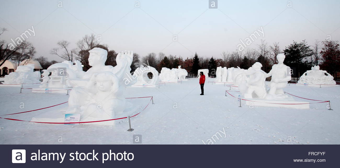 A Man Stands Amidst Snow