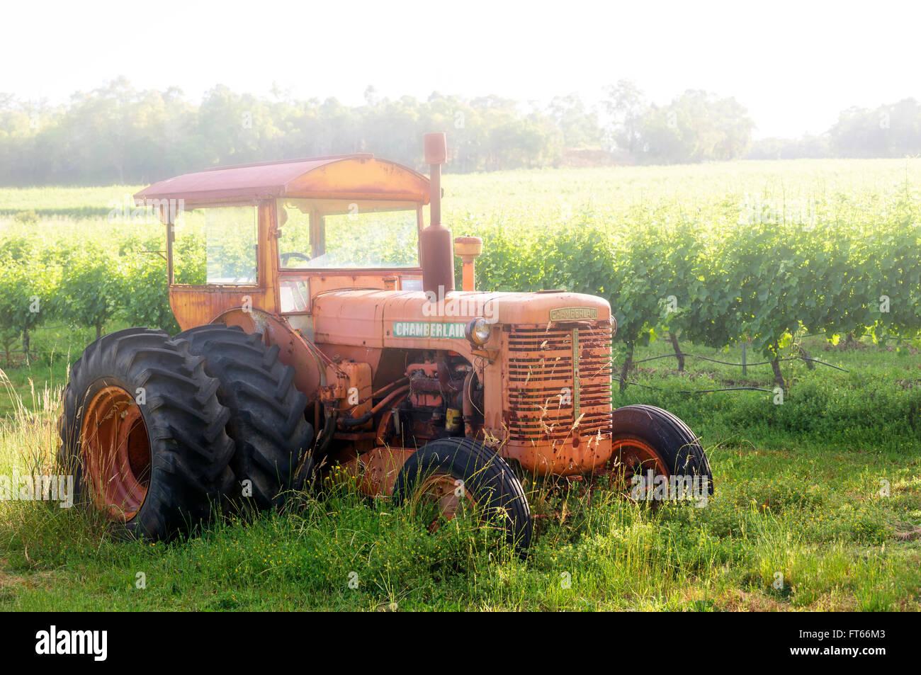 Tractor Broke Down : Tractor old broken down alongside vines stock