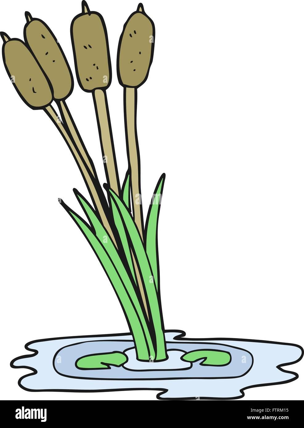 freehand drawn cartoon reeds stock vector art u0026 illustration
