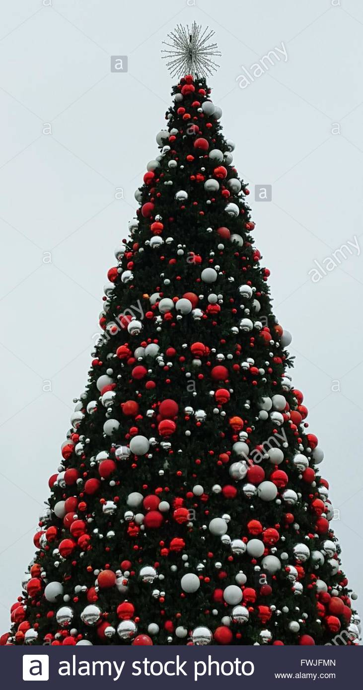 Low Angle View Of Christmas Tree Against Sky Stock Photo, Royalty ...