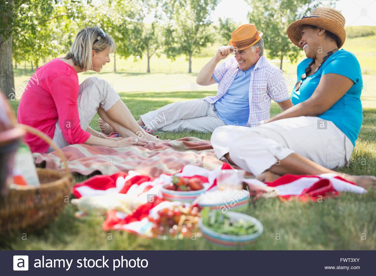 cheerful mature friends enjoying outdoor picnic stock photo