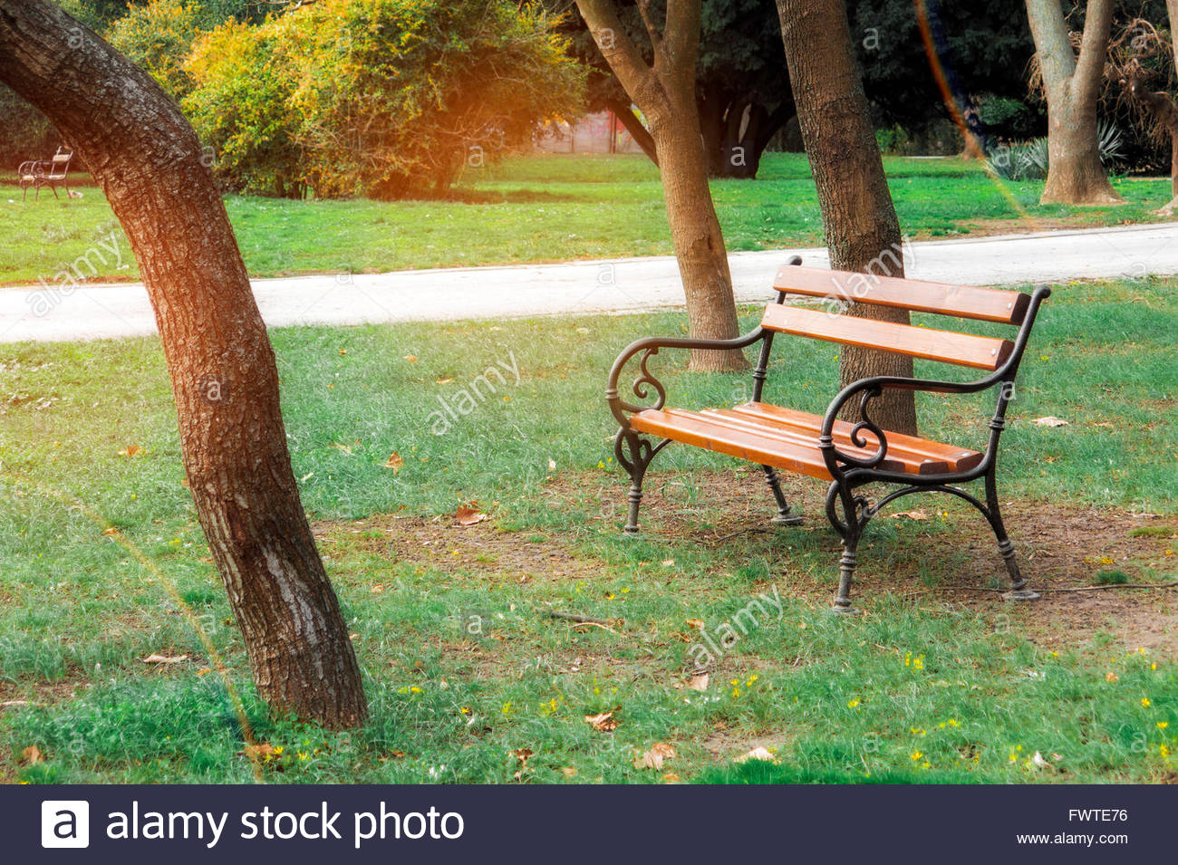 bench outside. Empty bench in the park on green grass outside with alley path and sun  flare during summer