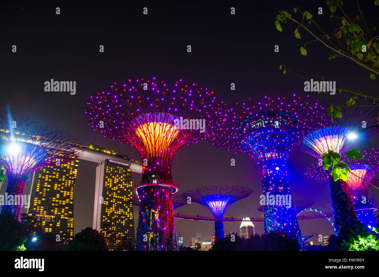 light of super tree in garden by the bay and marina bay sand in singapore - Garden By The Bay Fireworks