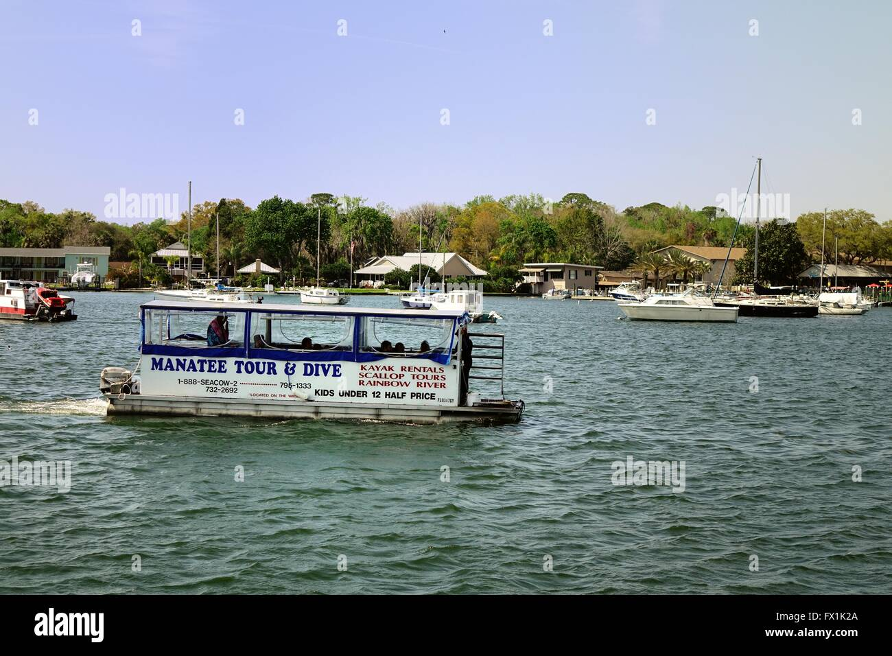 Crystal River Tour And Dive