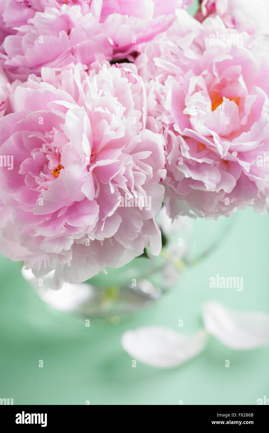 Beautiful pink peony flowers bouquet in vase stock photo royalty stock photo beautiful pink peony flowers bouquet in vase dhlflorist Images