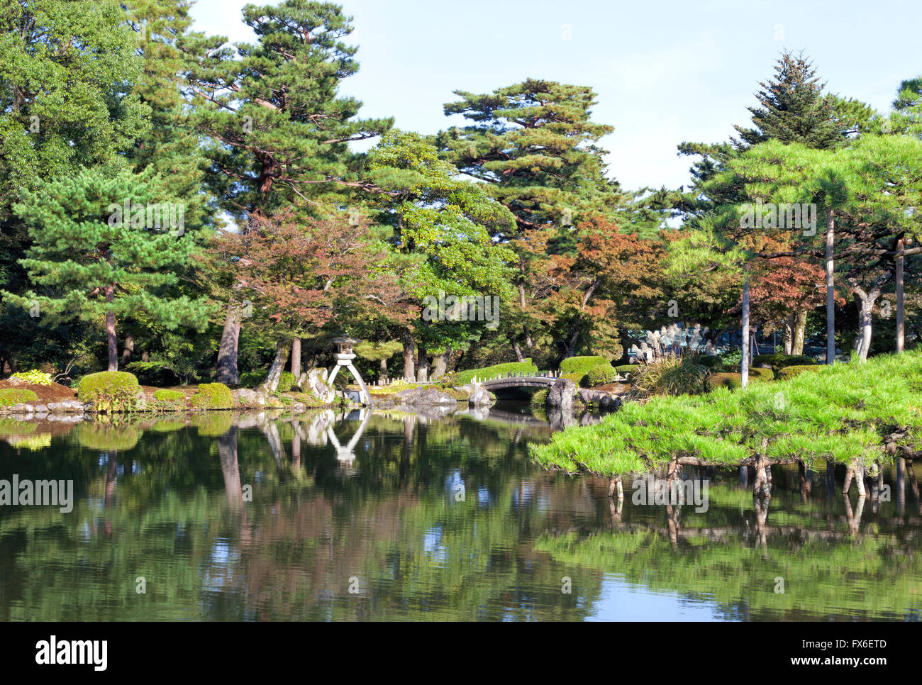 japanese style garden park with stone bridge lantern on a lake edge with green pine trees autumn leaf trees