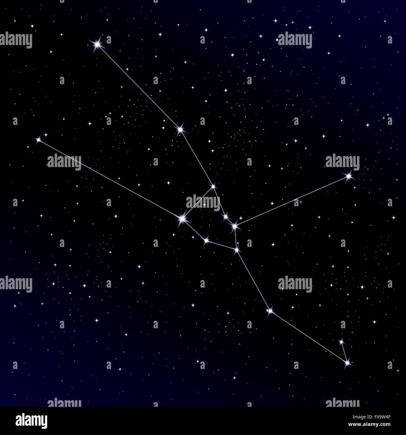 Taurus constellation Stock Vector Art & Illustration ...