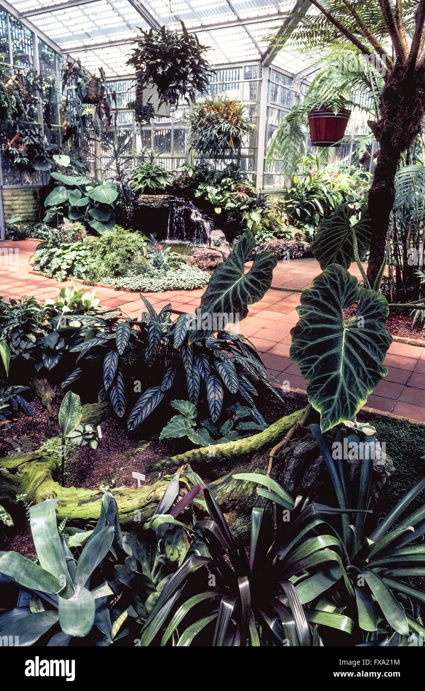 Stock Photo   The Sherman Library U0026 Gardens In Corona Del Mar, Orange County,  California, USA, Is A Unique Tourist Attraction With Plants From Around The  ...