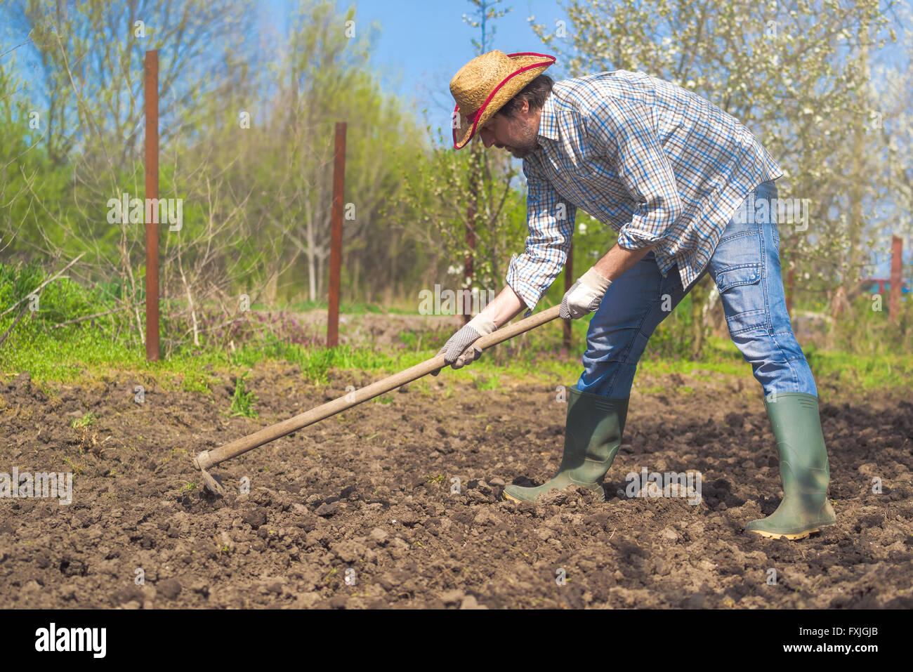 Man Hoeing Vegetable Garden Soil, New Growth Season On Organic Farm
