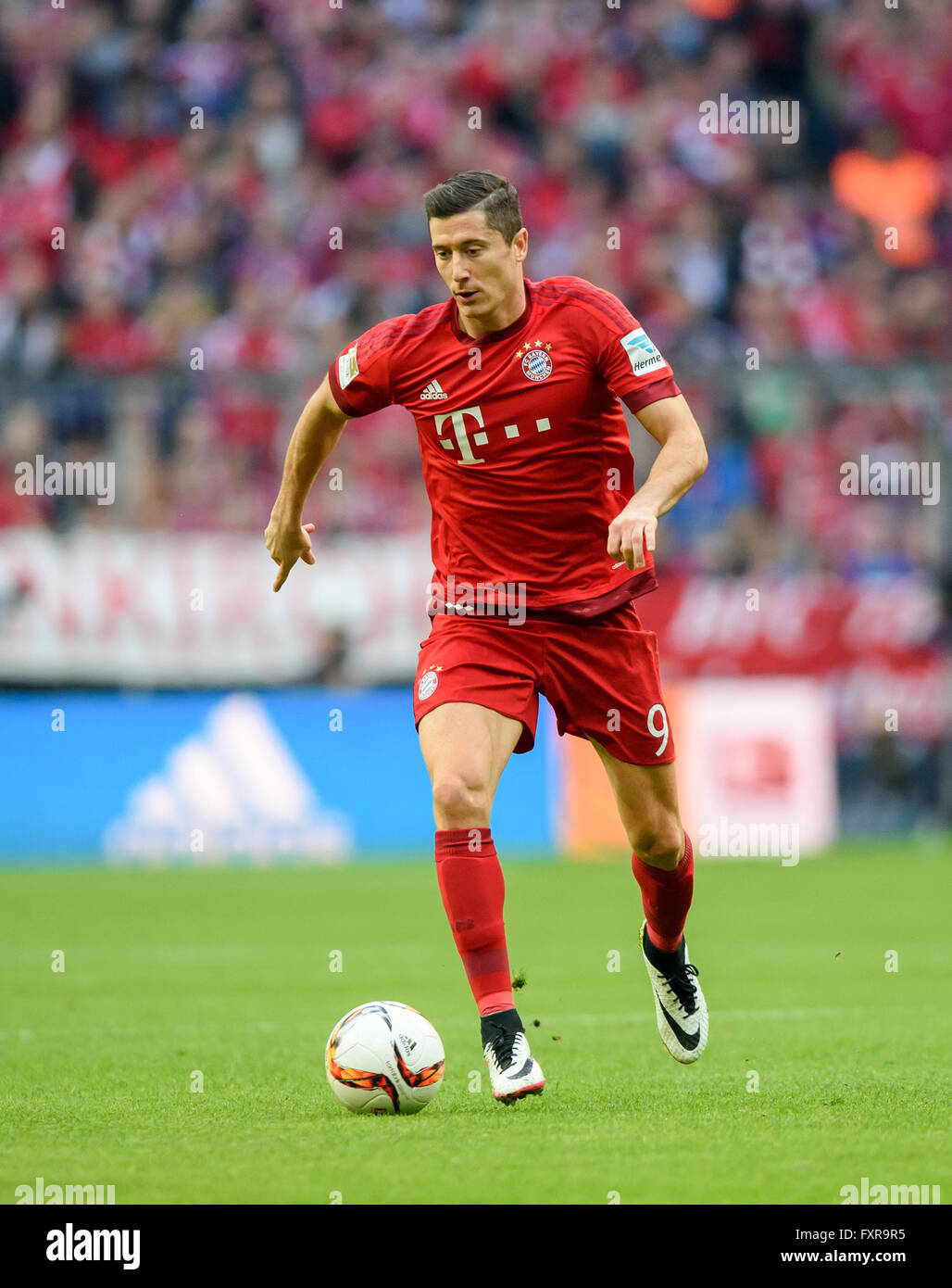 Bayern Munich s Robert Lewandowski in action during the Bundesliga