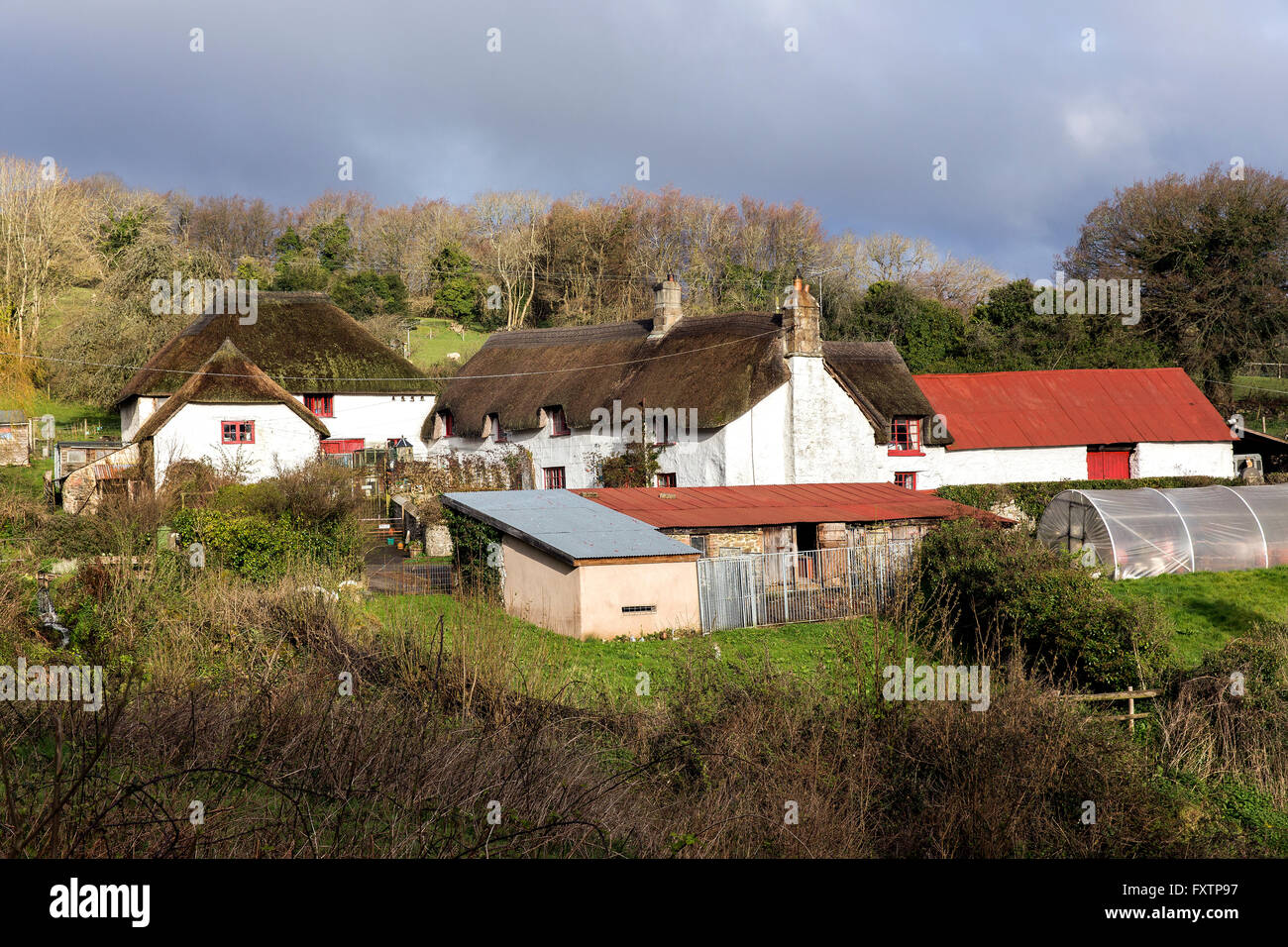 Thatched Cottage And Farm Complex In Dartmoor National Park Devon Englandcob Thatchvernacularleaden Skiesfarmingbarns