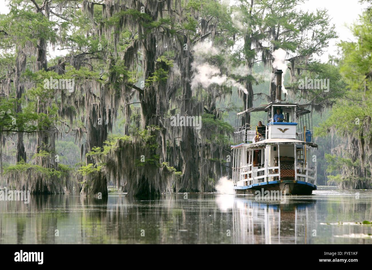 Boat Tours Of Caddo Lake