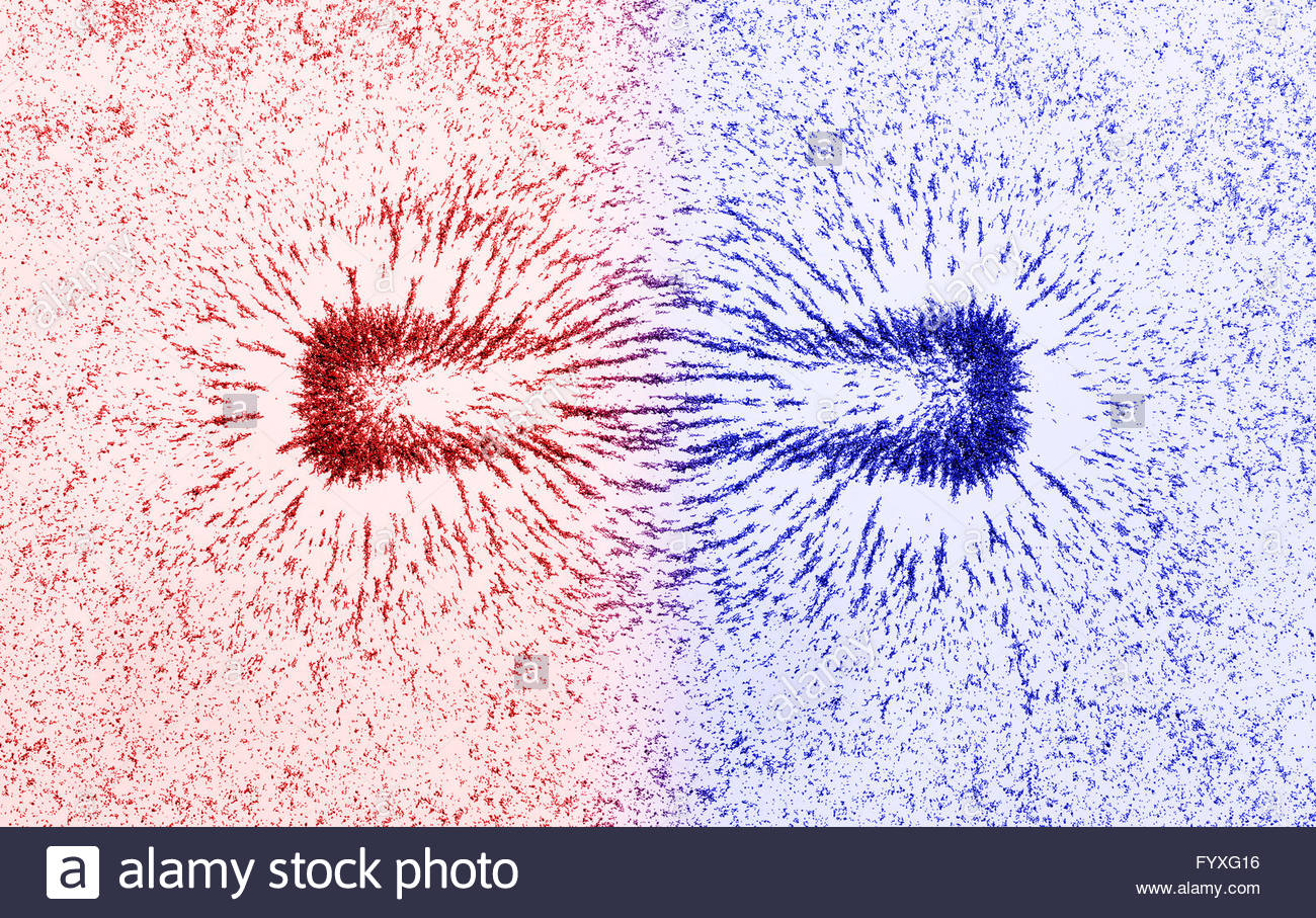 Magnetic field lines of bar magnet the little magnet needle demonstration of a magnetic field around a bar magnet stock photo buycottarizona