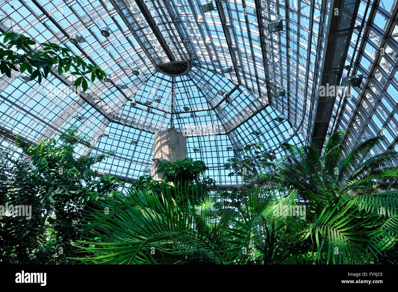Great Greenhouse, Grosses Tropenhaus, Botanical Garden, Dahlem, Berlin,  Germany