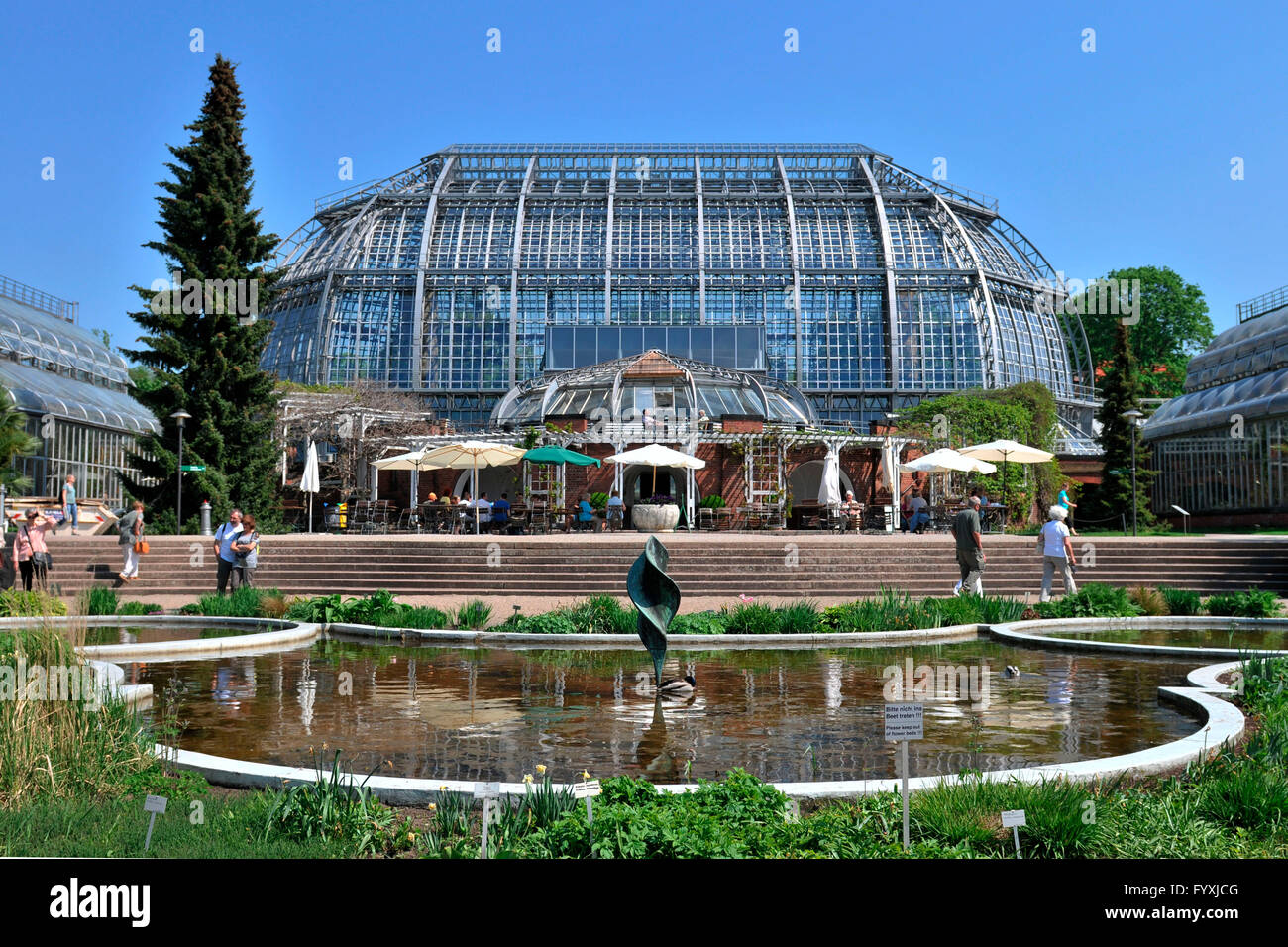 Superieur Great Greenhouse, Grosses Tropenhaus, Botanical Garden, Dahlem, Berlin,  Germany
