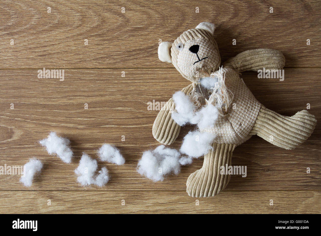 A Sad Abandoned Teddy Bear With His Stuffing Pulled Out
