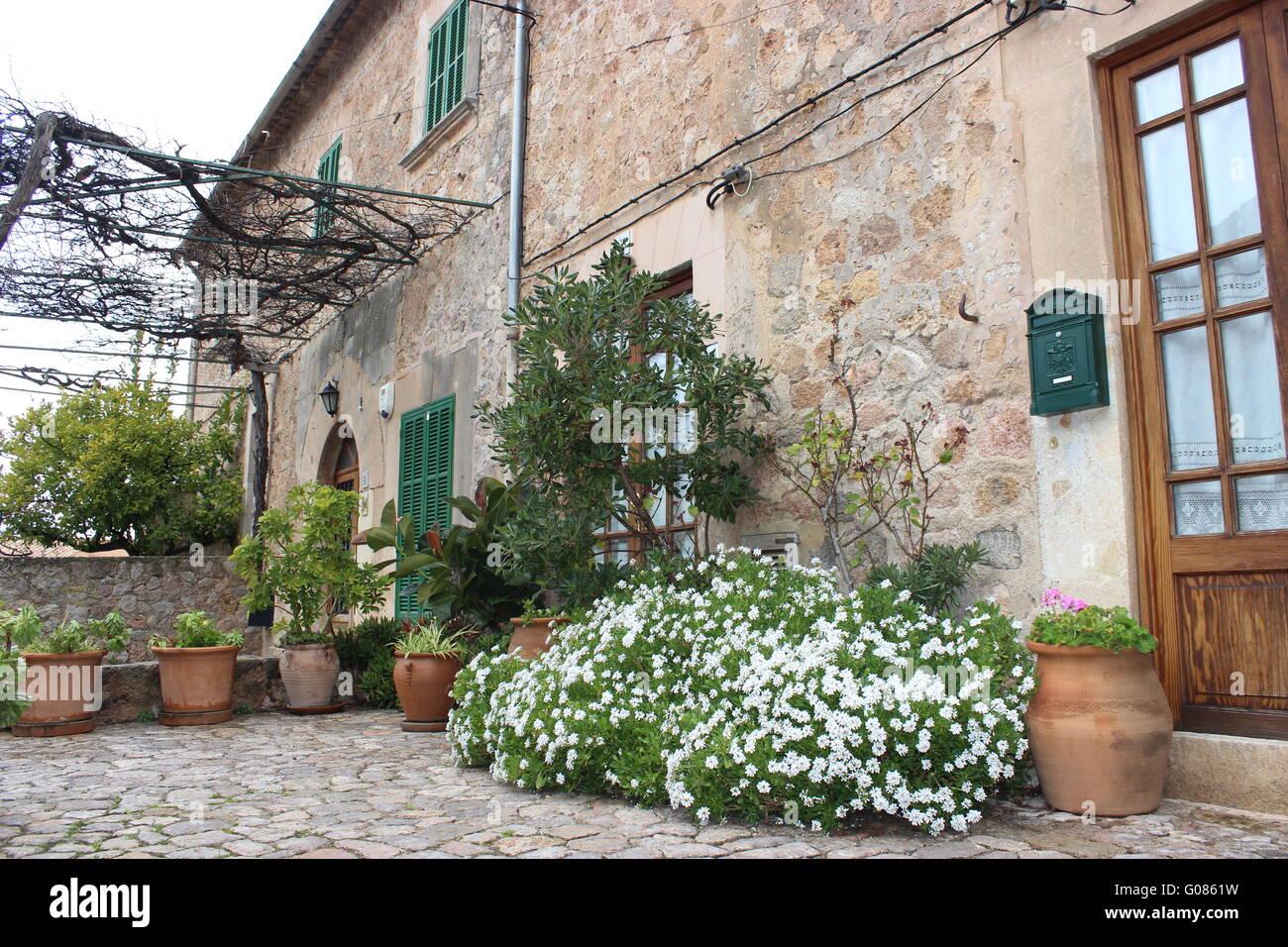 mediterranean terrace in valldemossa stock photo, royalty free, Garten und erstellen
