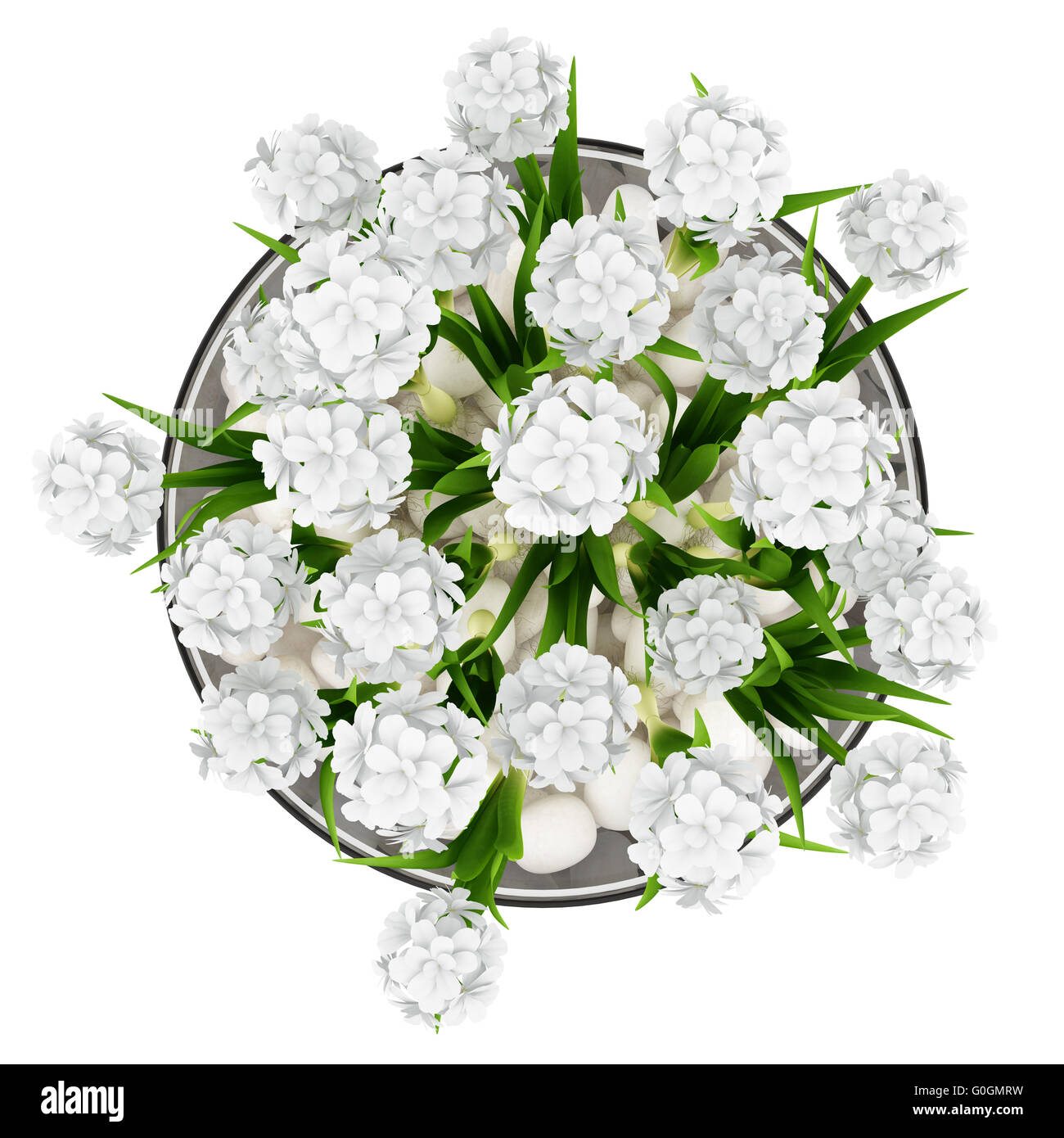 Top view of flowers in glass vase isolated on white background top view of flowers in glass vase isolated on white background reviewsmspy