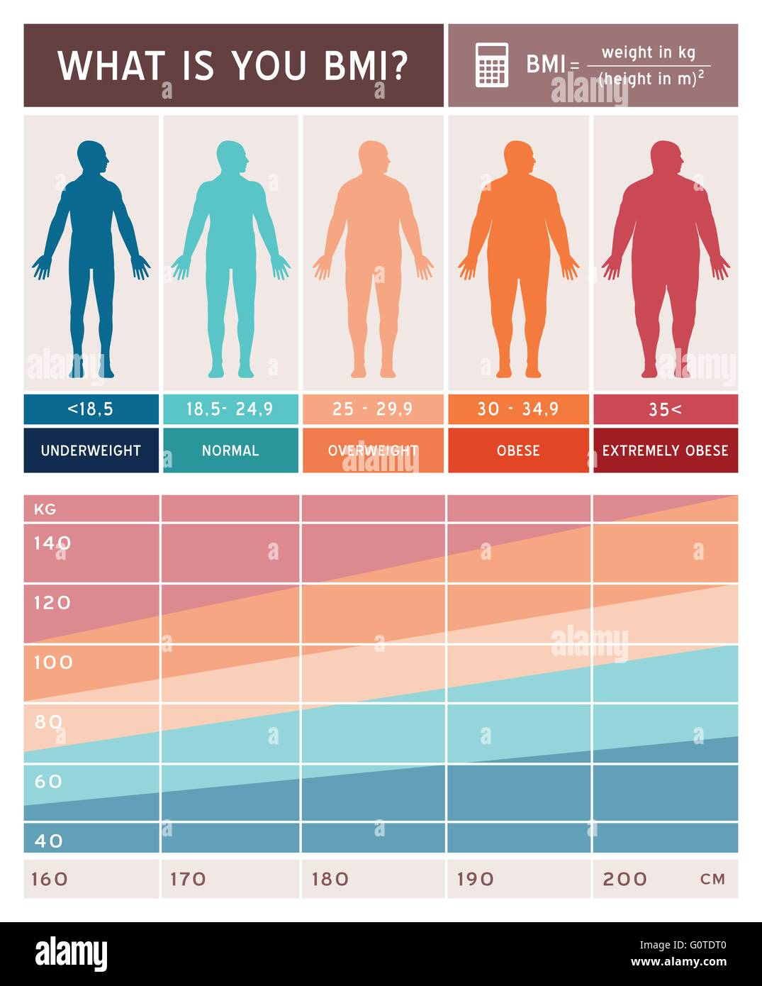 Body mass index infographics with body shapes chart and formula body mass index infographics with body shapes chart and formula nvjuhfo Image collections