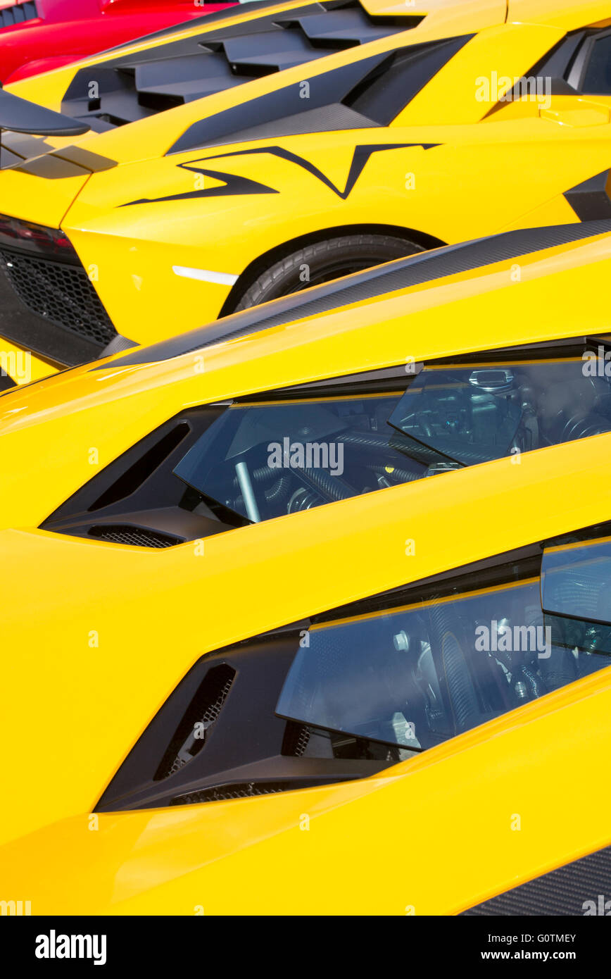 Nice Lamborghini Aventador Roadster Engine Abstract. Italian Super Car Amazing Pictures