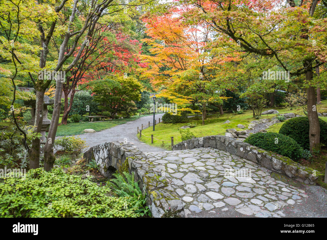 Japanese Garden Stone Bridge stone bridge and fall foliage in seattle japanese garden stock