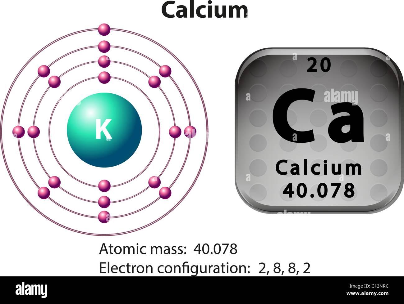 Symbol and electron diagram for calcium illustration stock vector symbol and electron diagram for calcium illustration buycottarizona Image collections