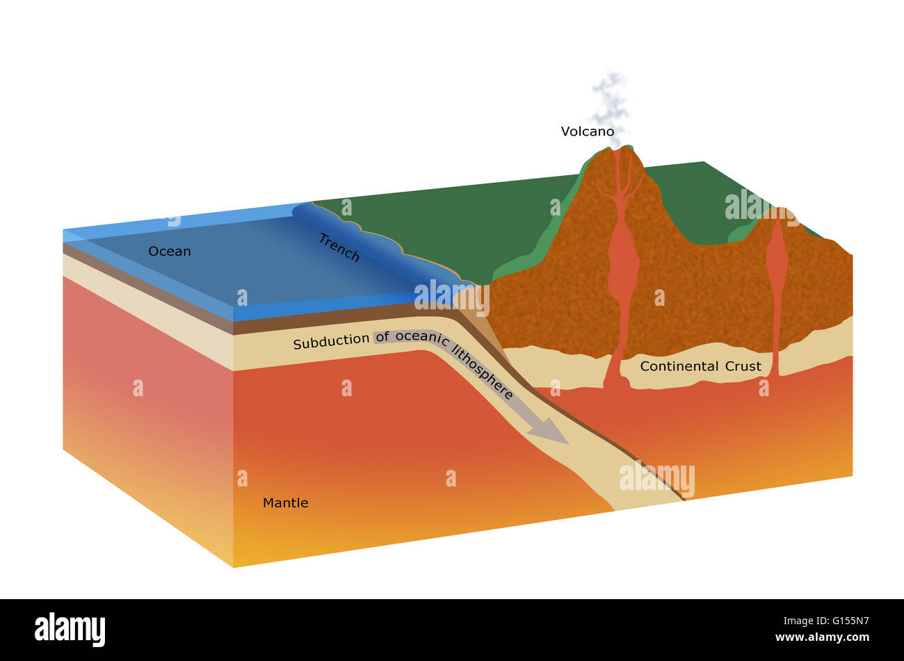 Cutaway artwork of a subduction zone the tectonic plates of the the tectonic plates of the earths crust move on the semi plastic molten layers underneath the thin oceanic plates spread outward from mid ocean ridges pooptronica