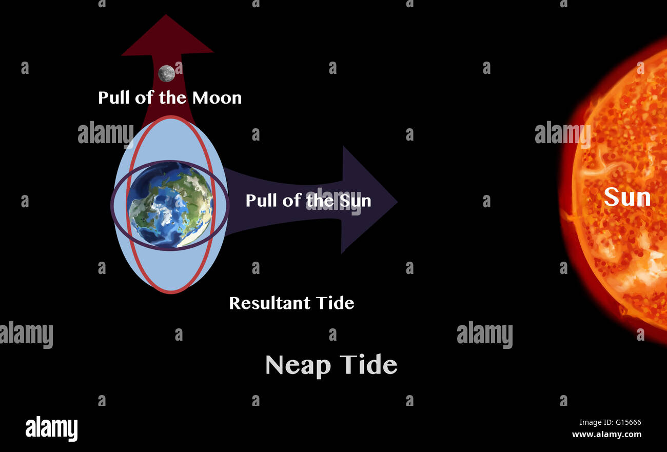 Tides the rise and fall of sea levels are caused by the stock tides the rise and fall of sea levels are caused by the gravitational forces exerted by the moon and the sun and the rotation of the earth pooptronica Choice Image