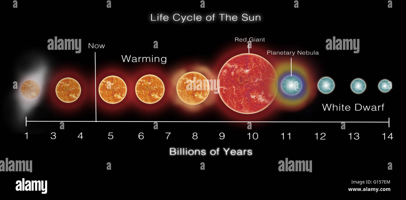 the life cycle of the sun Start studying the life cycle of stars learn vocabulary, terms, and more with flashcards, games, and other study tools where is our sun in its life cycle.