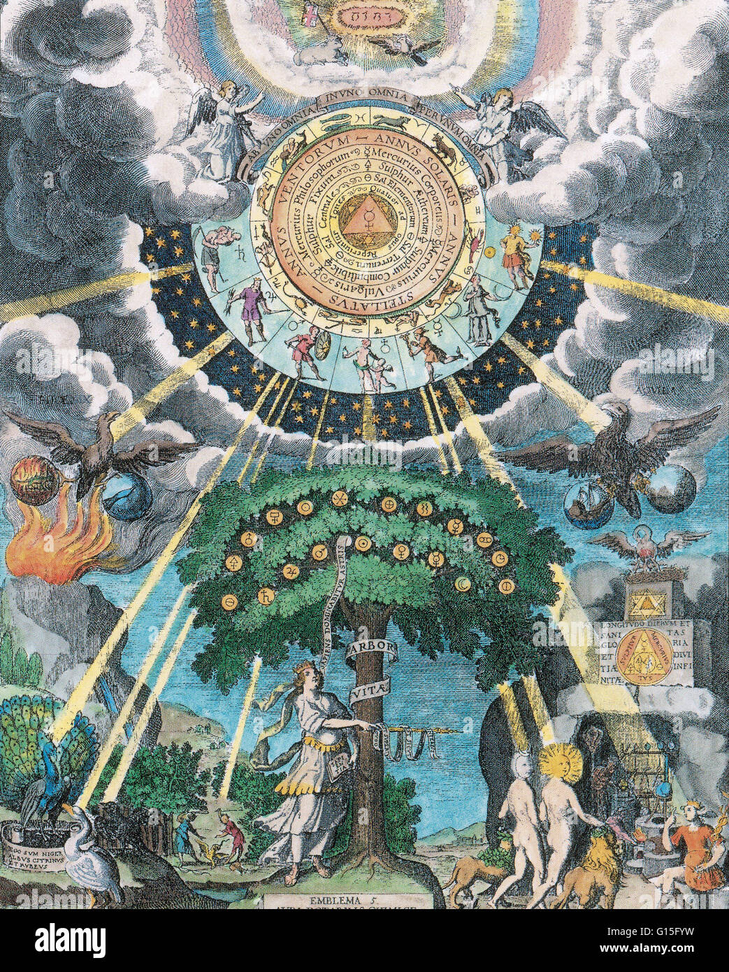 From the alchemical tradition the tree of life is a symbol of the from the alchemical tradition the tree of life is a symbol of the opus magnum the goal of the alchemical journey which is to find the philosophers stone buycottarizona Image collections