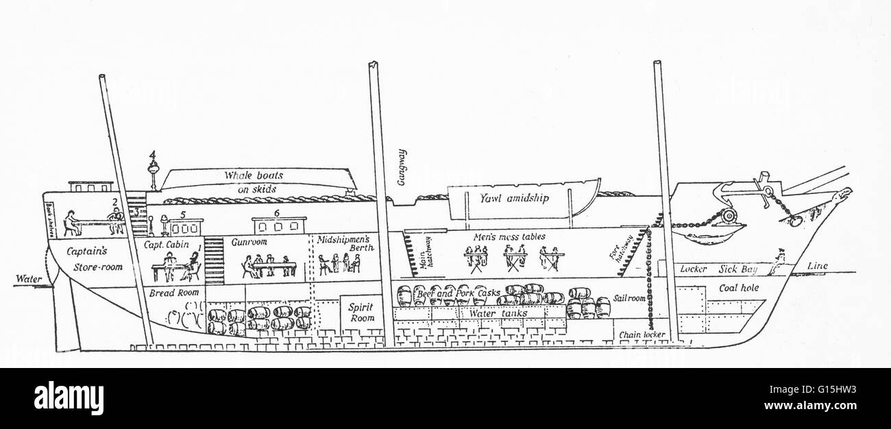 HMS Beagle longitudinal section as of 1832. Numbers on the ...