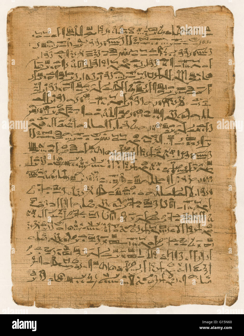 http://c8.alamy.com/comp/G15N60/papyrus-is-a-thick-paper-like-material-produced-from-the-pith-of-the-G15N60.jpg