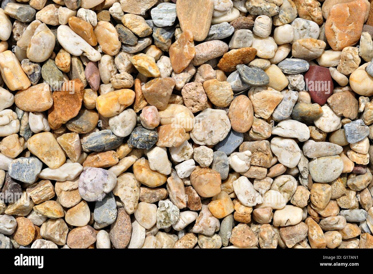 Smooth shaped white stones surface texture background stock photo - Background Of Colorful Beach Pebbles Of Different Shape And Size Stock Image