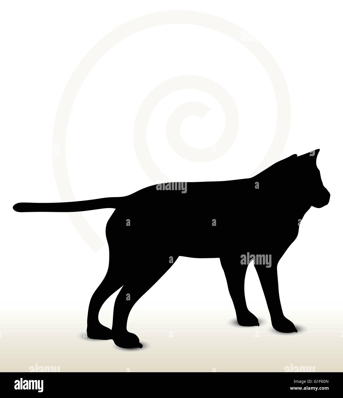 vector image animal wolf silhouette isolated on white background