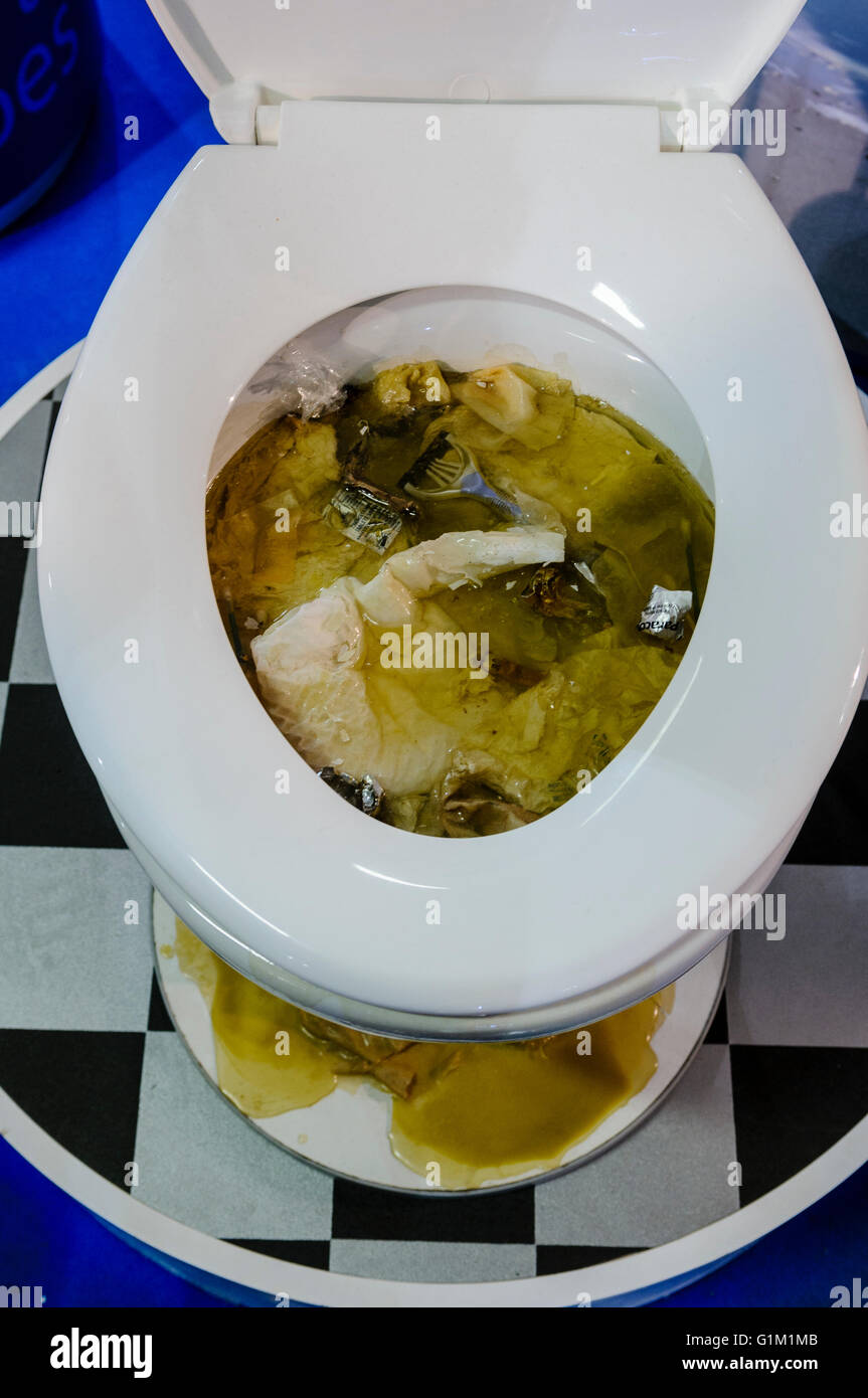 Clogged Toilet Stock Photos amp Clogged Toilet Stock Images Alamy. Bathroom Clogged Toilet