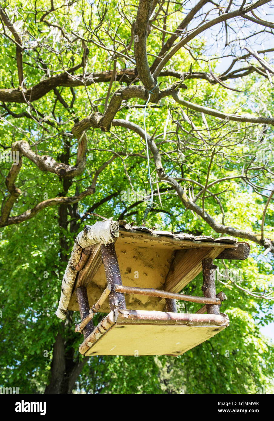 Hanging Tree House Wooden Bird House Hanging On The Green Tree Beauty In Nature
