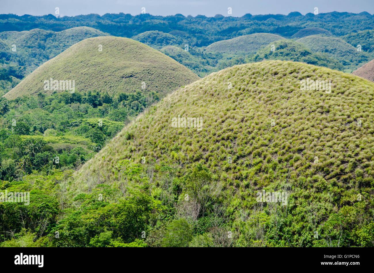 Chocolate Hills, Summer, Bohol Island, Philippines Stock Photo ...