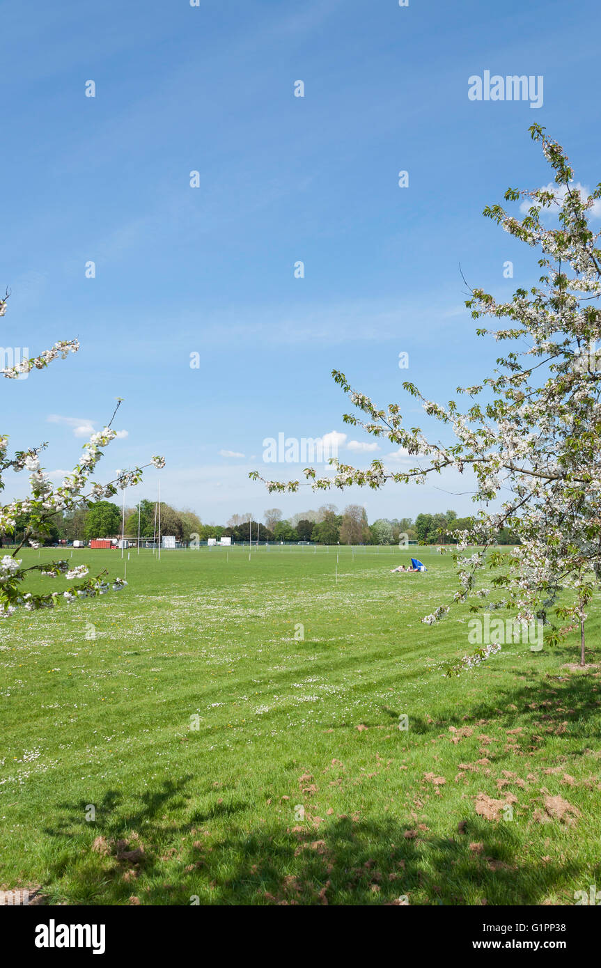Playing Fields At Home Park Windsor Berkshire England United Kingdom