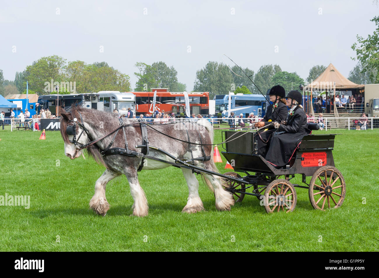 Mini Horse Carriage Riding At Royal Windsor Show Home Park Berkshire England United Kingdom